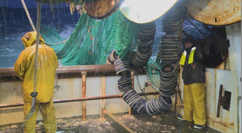 SALE TEMPS POUR LE CHALUT primé au Festival Pêcheurs du monde !